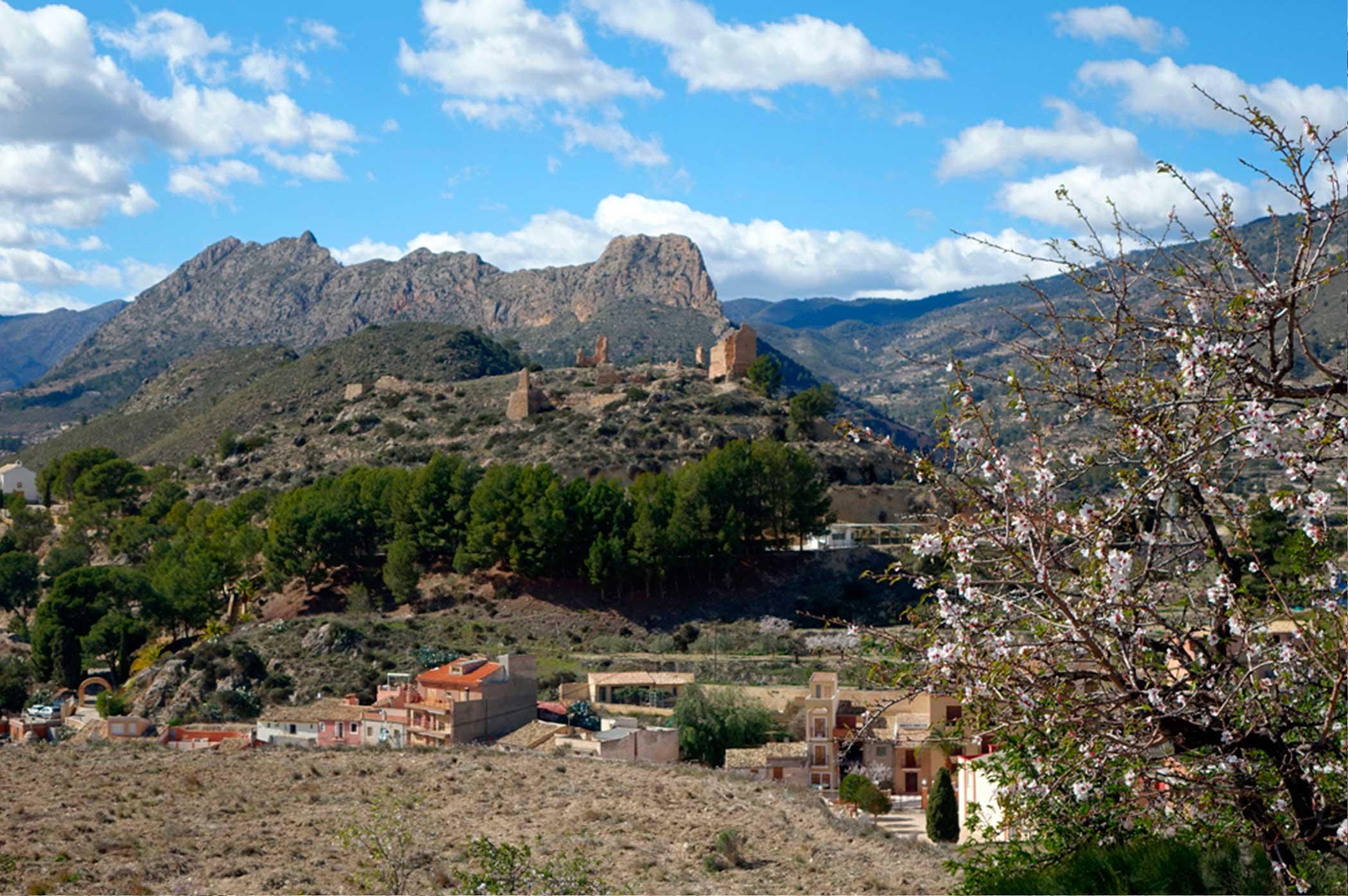 Ruta de los almendros en flor de Relleu y Villajoyosa
