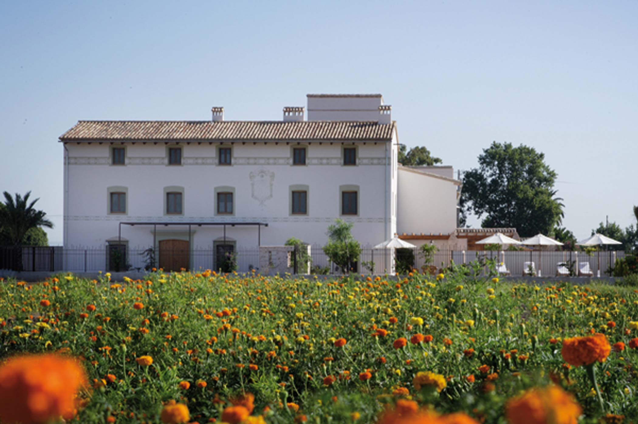 Alboraia, Albufera (Valencia)